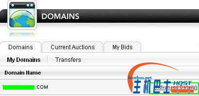 3 domain list advanced details.jpg